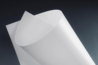 Makrofol® DE 1-4 010181